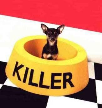 Chien killer